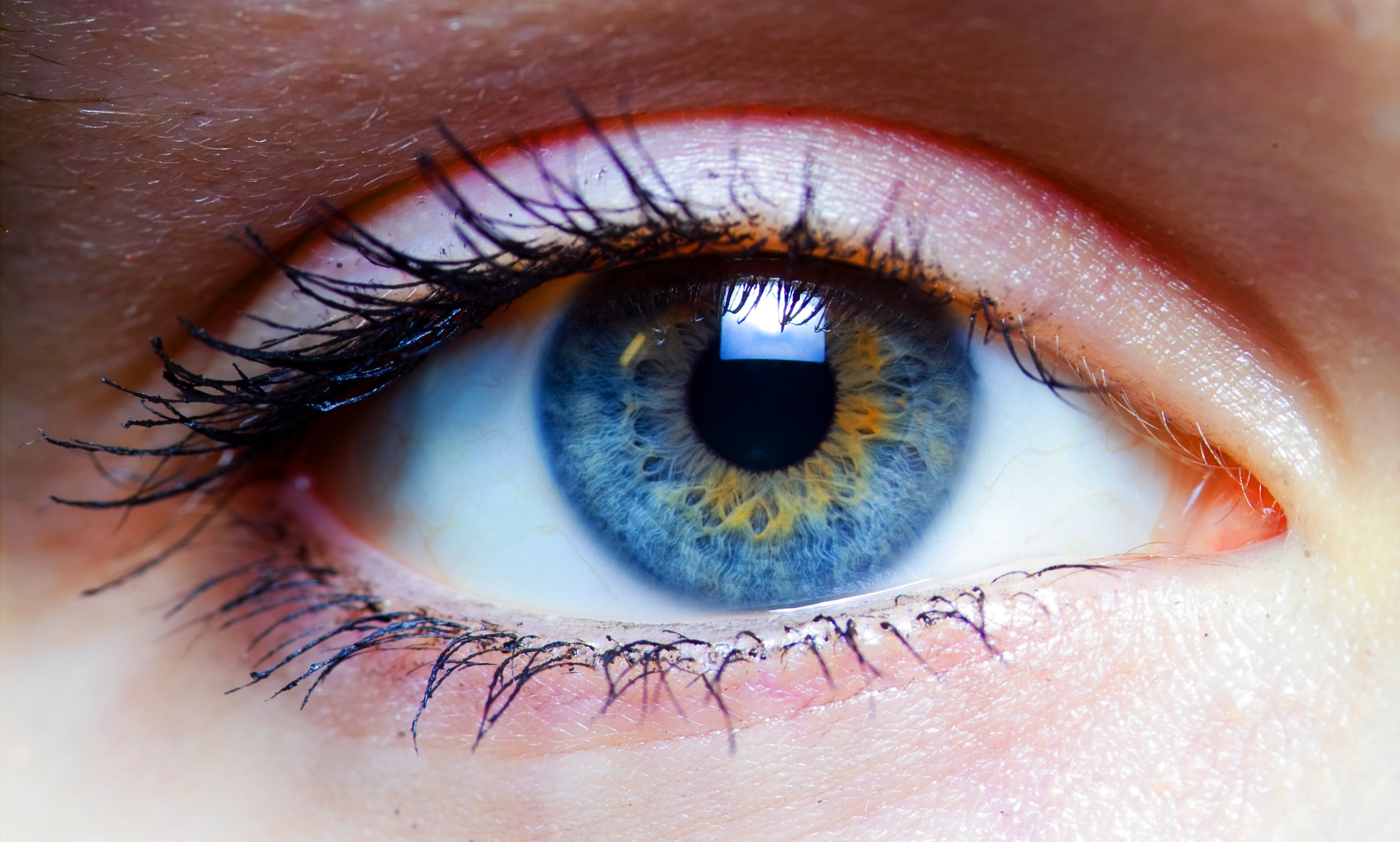 Visual learning with the eye